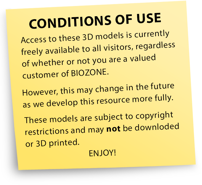 FAQ> Conditions Of Use